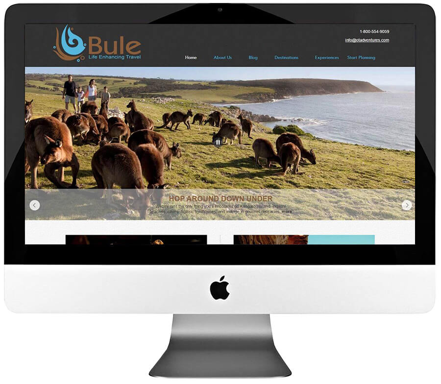 Travel Agency Custom WordPress Website Development