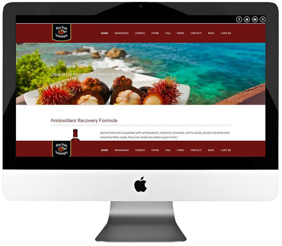 Fruit Juice Manufacturer eCommerce store Development