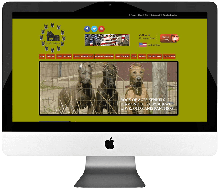 Dog Trainer Custom WordPress Website Development