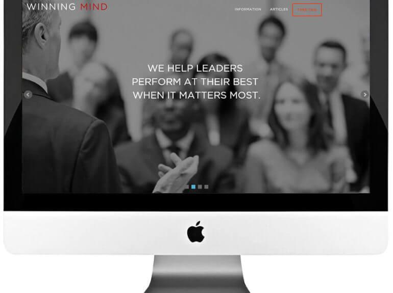 Management Consulting Responsive WordPress Website Development