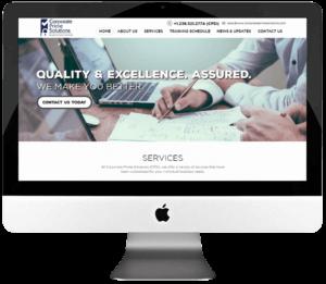 Consultant Responsive WordPress Website Design & Development