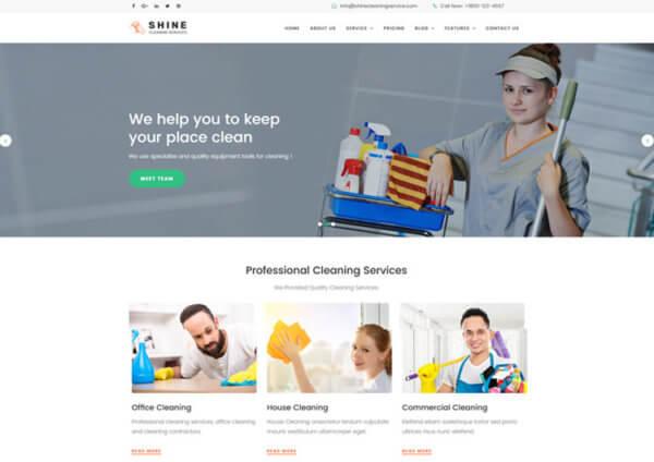 Cleaning Company Responsive WordPress Website Design Agency