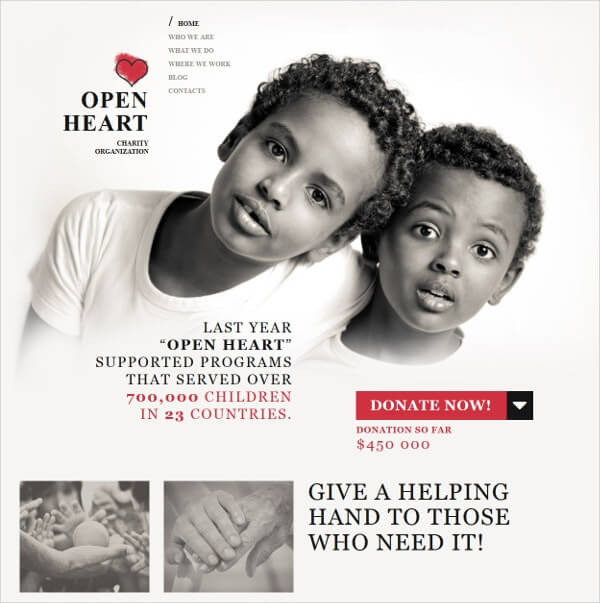 Non Profit Charity Responsive WordPress Website Design